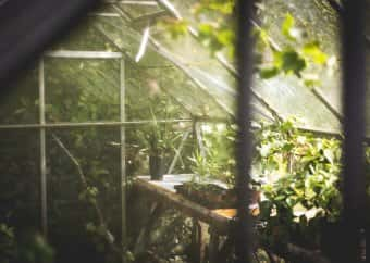 Superb Preparing Your Greenhouse For Winter Greenhouse Hunt Home Interior And Landscaping Oversignezvosmurscom