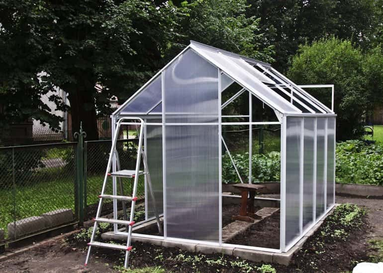 glass greenhouse with ladder in green garden