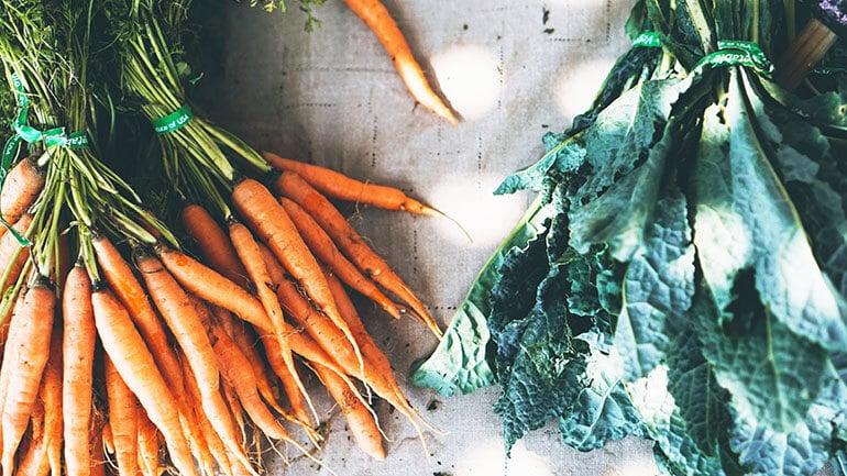 winter vegetables carrots crops