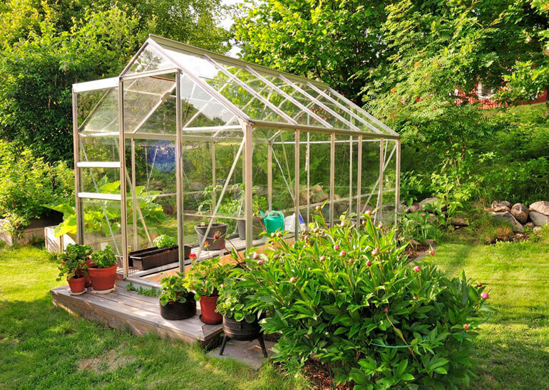budget greenhouse glass garden plants vegetables