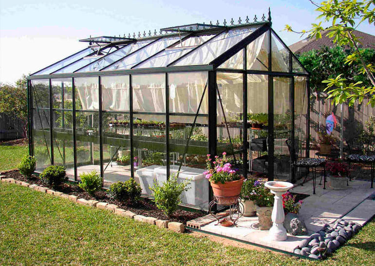 glass victorian greenhouse in garden