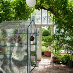 indoor portable greenhouses for plants and vegetables